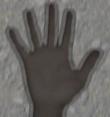 Xray_specs_hand