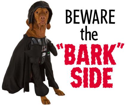 Bark_side