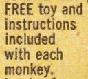 Monkey_4